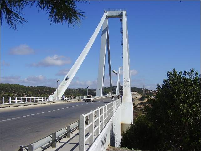 If you see carefully, there is a young man using this bridge as a slide