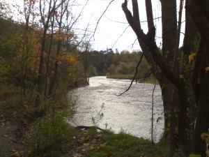 Blog-23-11-2013-Riverwood-Ontario