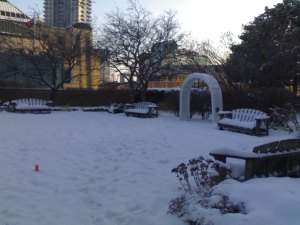 Winter-Ontario-1
