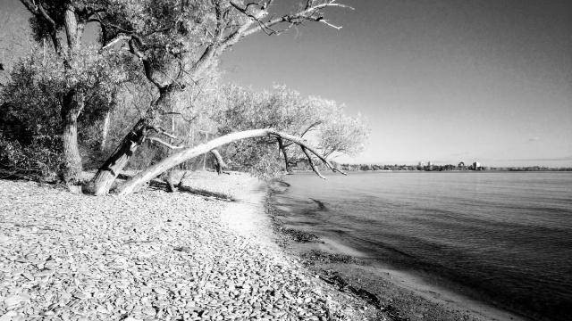 Rattray Marsh-Port Credit-Mississauga-2016-Fall