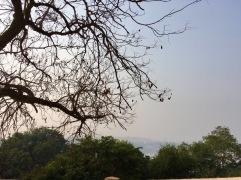 Benares-3